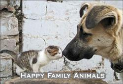 happy family animals