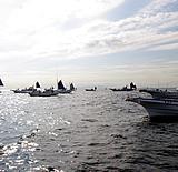 釣り船船団