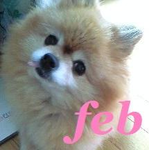 feb01