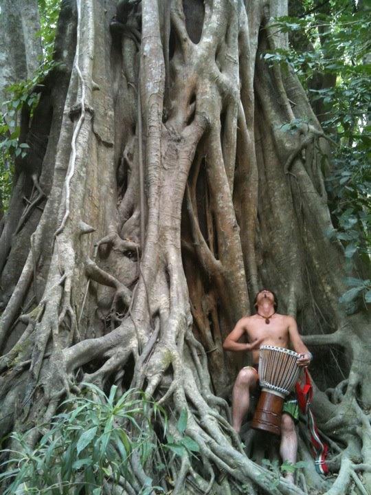profilr_tree