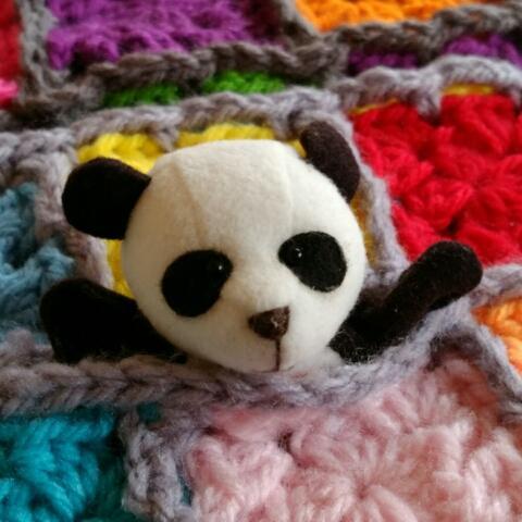 panda*