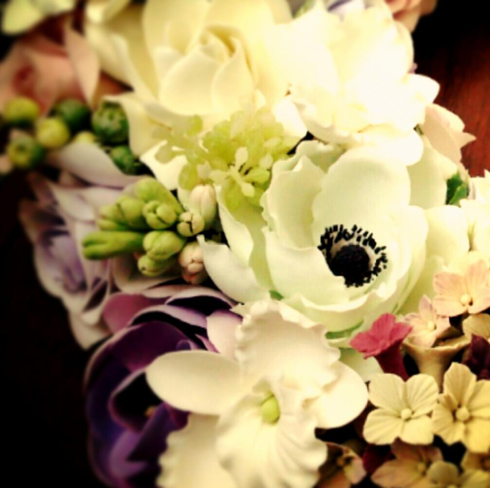 wisteria-loves-cilantro