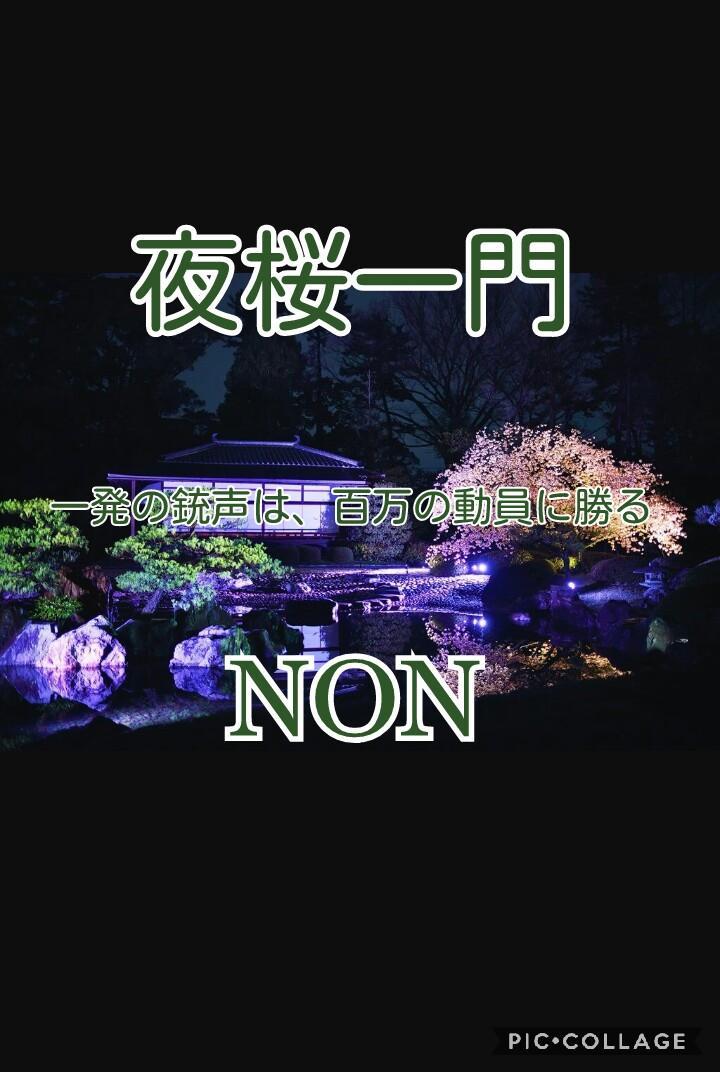 220pka-nonchan