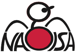 NagisaMagicProject