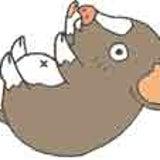 zushi-puのプロフィール画像