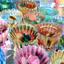 画像 絵画教室 お絵かき教室キウイのユーザープロフィール画像