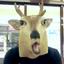 画像 オリオンのブログのユーザープロフィール画像
