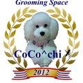 CoCo^chiのプロフィール