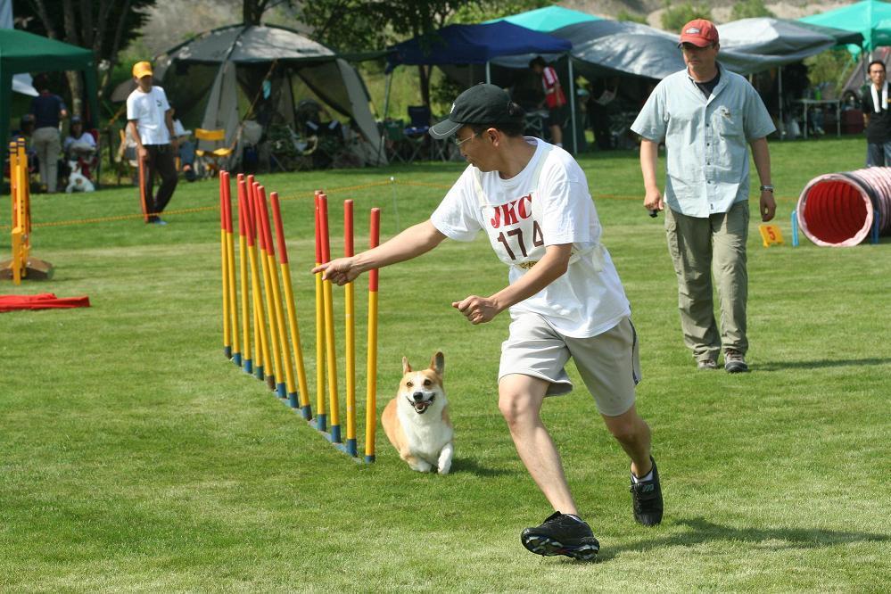 ペットの癒しの専門家・アニマルヒーリングスクール代表・田村