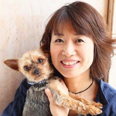 犬マッサージ&アロマ講師 橋本理恵