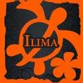 イリマのプロフィール