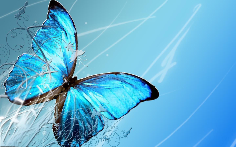 香里園nail butterfly