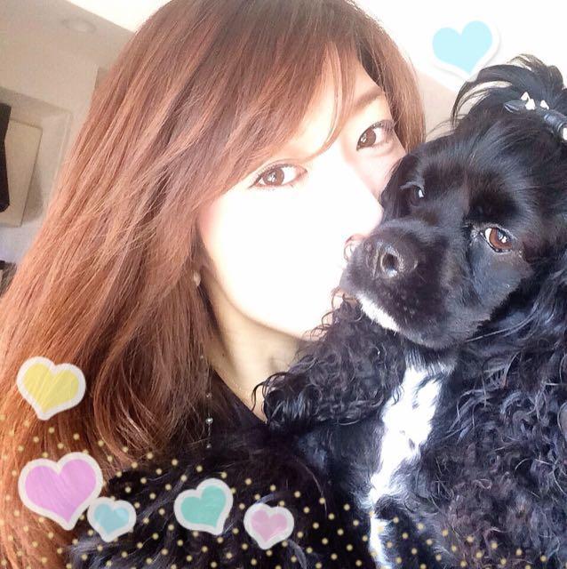 ariel ♥ (アリールアンドシーモデル犬)