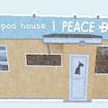 shampoo house PEACE DOGのプロフィール
