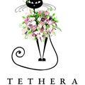 tethera-sohoのプロフィール