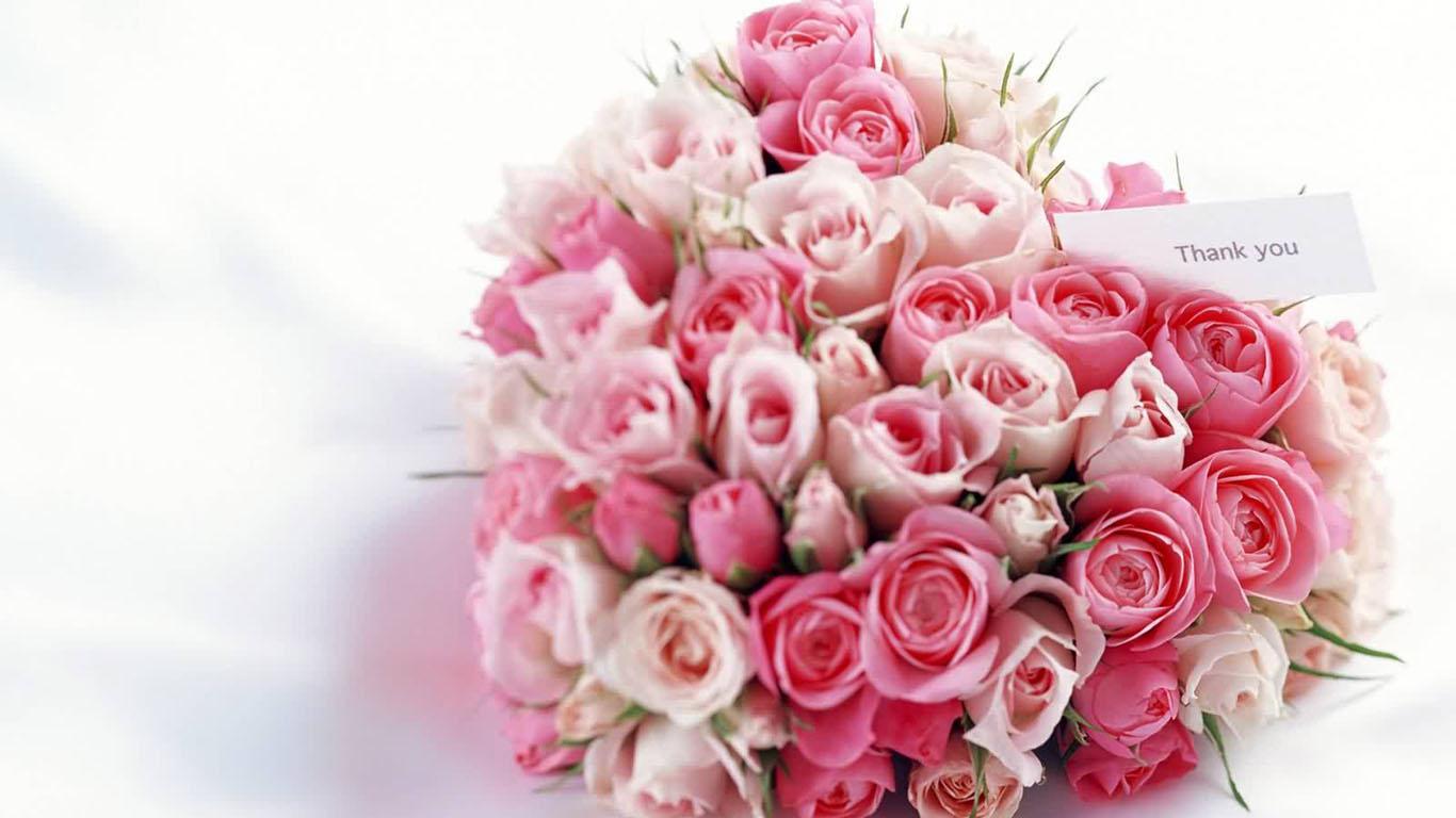 *☆Kiana C Rose☆*