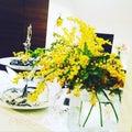 mimosaのプロフィール