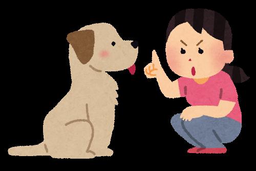 愛犬しつけアドバイザ-「近藤真一」