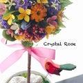 Crystal Rose Yukiのプロフィール