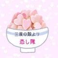 めし恋ちゃんのプロフィール