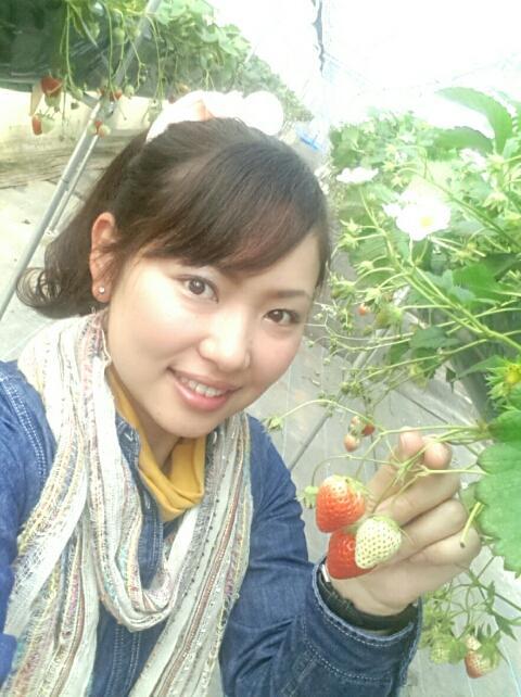 千葉は野菜の宝石箱☆食育ネット浅野美希の新米社長blog