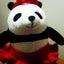 画像 mayumiのブログのユーザープロフィール画像