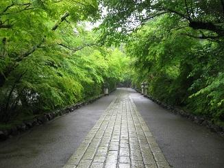 巡礼・物見遊山の旅田沢湖、水深423mの世界とは