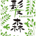 kamimori917のプロフィール
