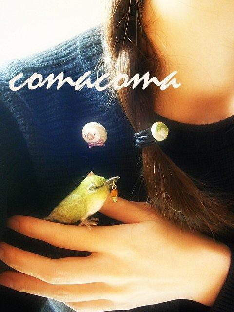 COMACOMA