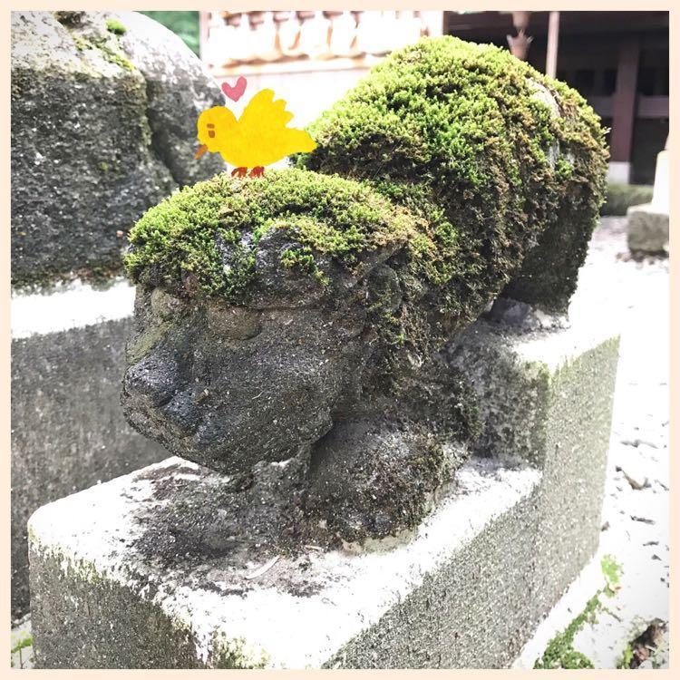たかお神社の狛犬