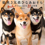 yu matsuのプロフィール画像