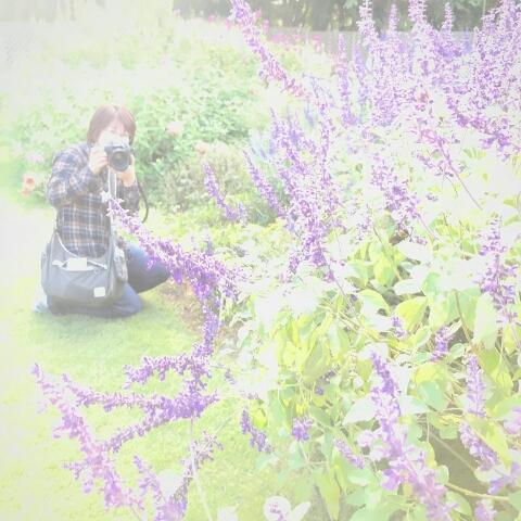 Hati fotoさとみ(-inaho-)