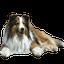 画像 senna120530のブログのユーザープロフィール画像