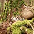 Qisuiのプロフィール
