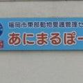 わんにゃんよかイベント「わんわん桜学校inあにまるぽーと」のプロフィール