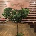 札幌豊平区 髪の悩み、頭皮の悩みを解消していく予防美容サロン・マタネ木野田秀樹のブログのプロフィール