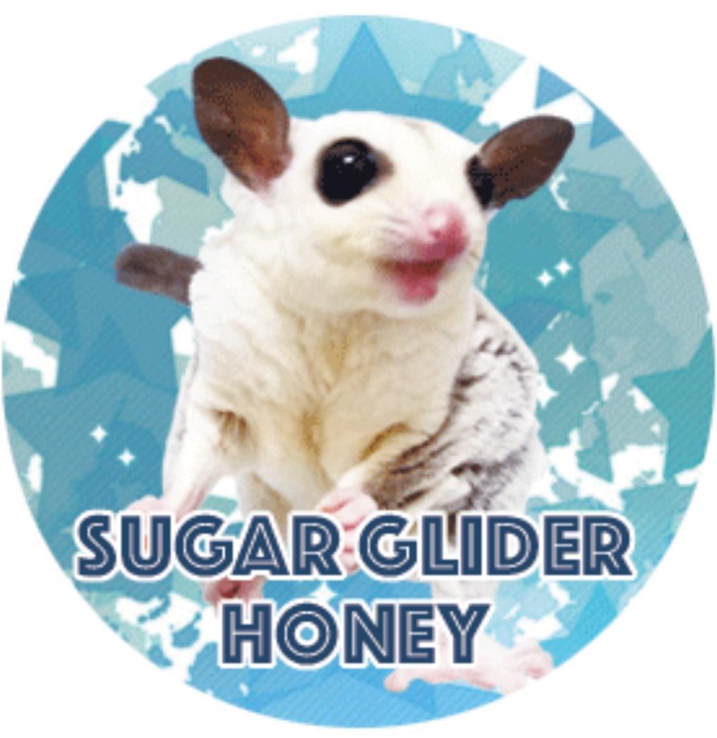 Sugar Glider Honey