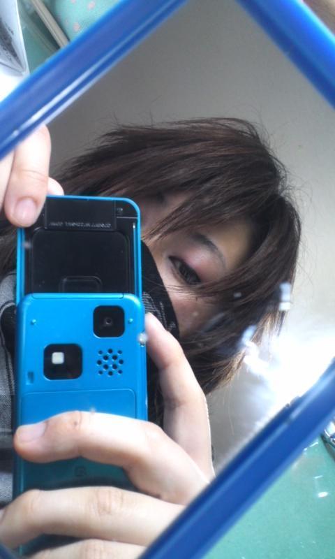 柴-SHIBA-