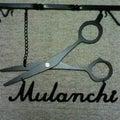 mulanchiのプロフィール