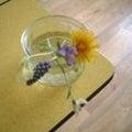 butterfly bouquetのプロフィール
