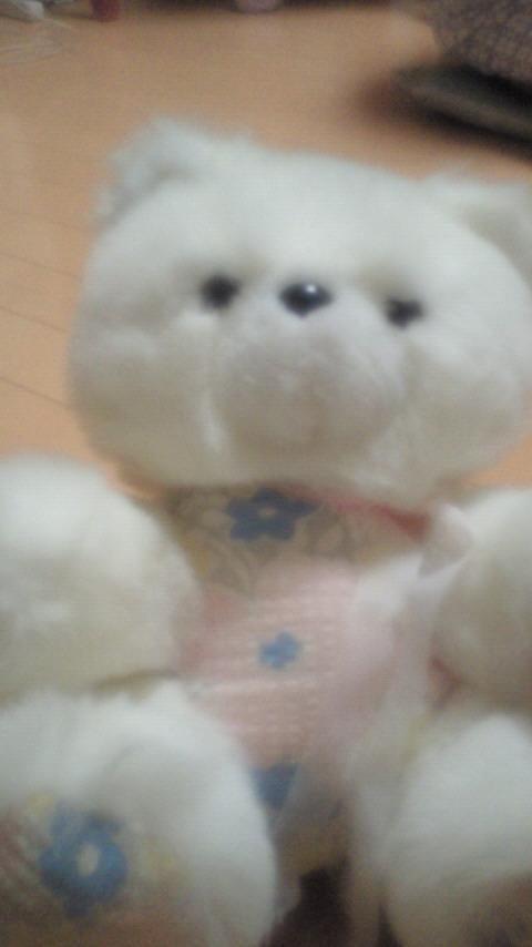 くまお('ω')自由人☆幸せいっぱい