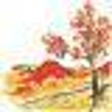 算命心理カウンセラー 秋山紅樹