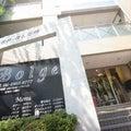 豊中市 ロマンチック街道のBolgeブログのプロフィール