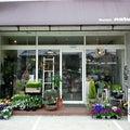秋田市の小さな小さな花屋のプロフィール