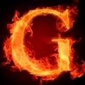 Gのプロフィール