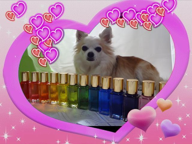 知多半島カラーセラピーWelcome Colorのおかめさん
