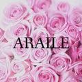 ARAILE  アレイルのプロフィール
