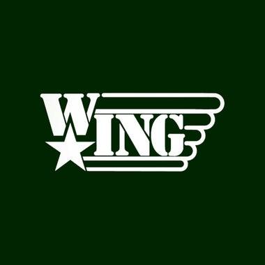 wing19910807