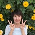 内藤 慶子のプロフィール