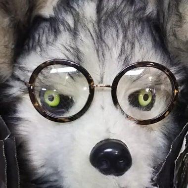 ワンプロ~Dogwoman~躾をenjoy(*≧∀≦*)